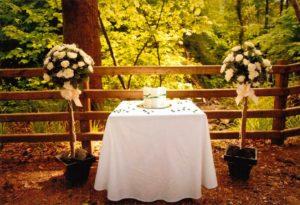 wedding pics10