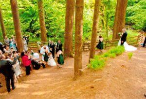 wedding pics6
